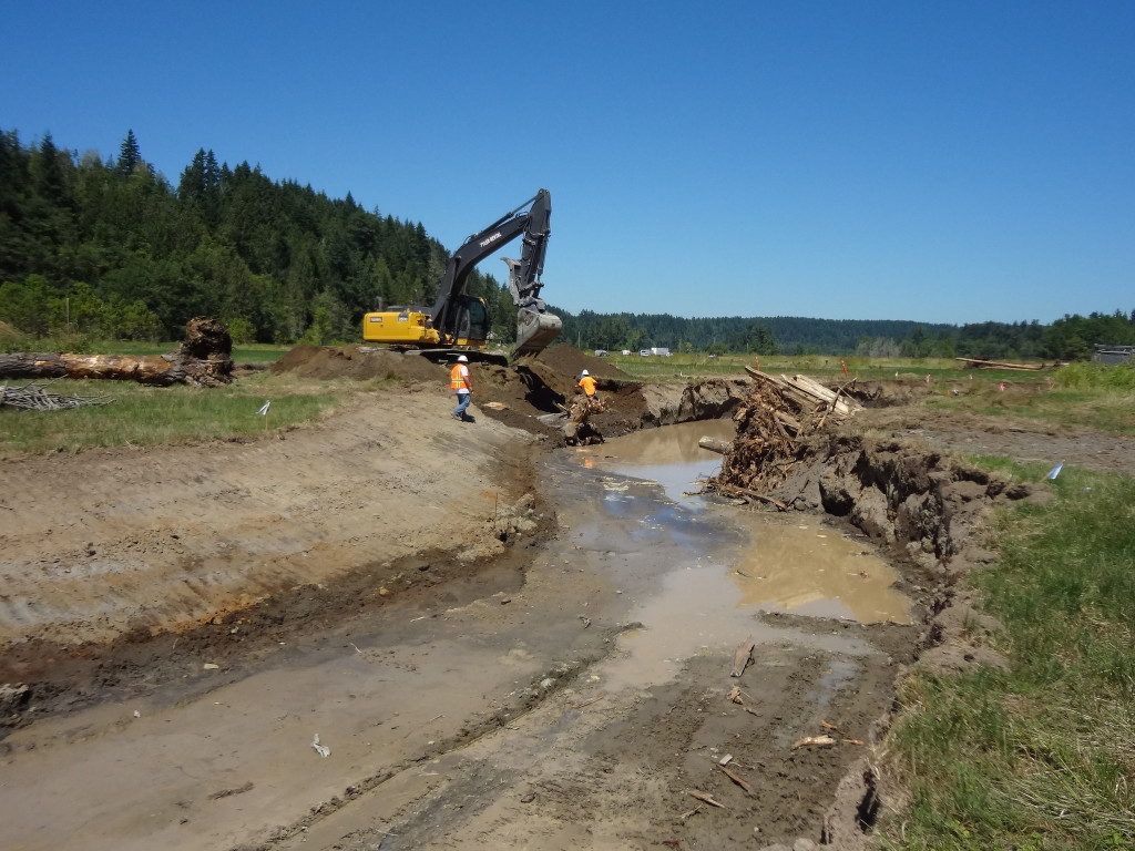 The meanders in the new channel will mimic the historical conditions of Ohop Creek. It's about half way completed!