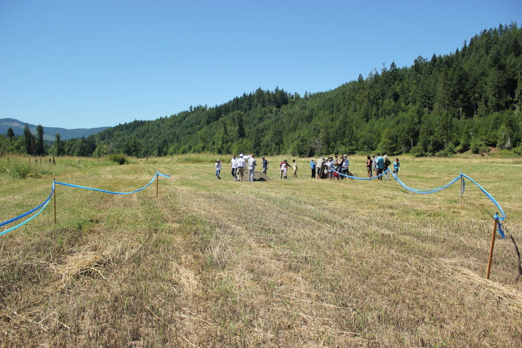 The groundbreaking took place in the soon-to-be Ohop Creek channel. The new channel will be wider and shallower than the ditch it is currently in. This will form new habitats and will enhance salmon populations. Photo credit: Emmett O'Connell.