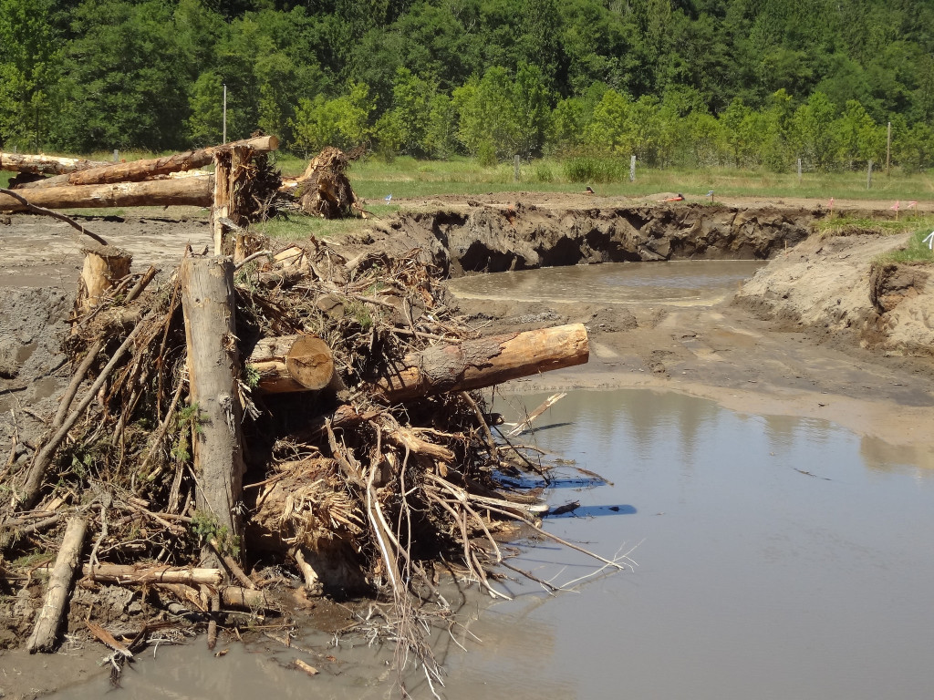 Large woody debris is installed to provide refuge for fish.